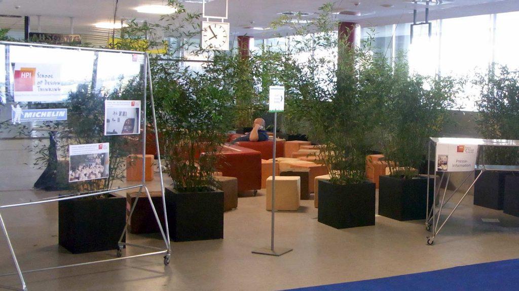 Abgrenzung eines Sitzbereiches durch Grünpflanzen