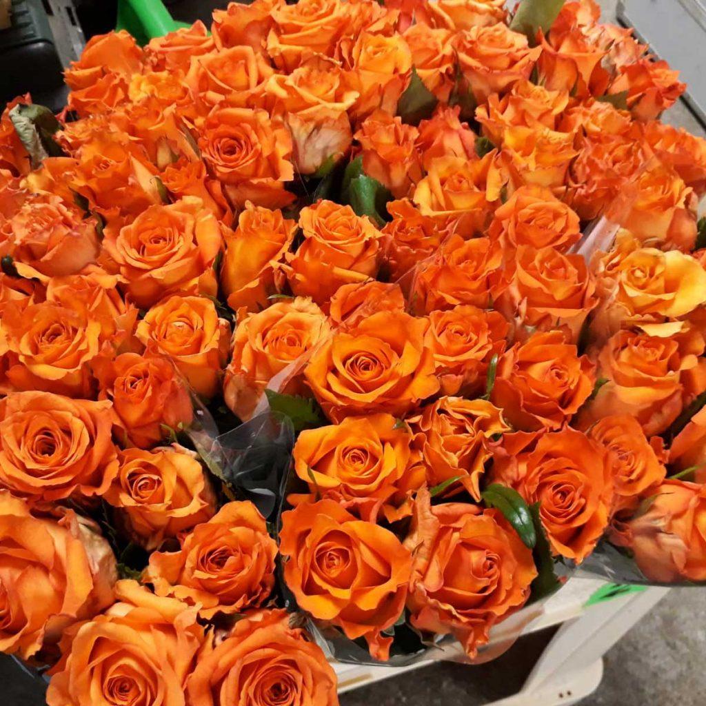 Blumen für die Jugendlichen