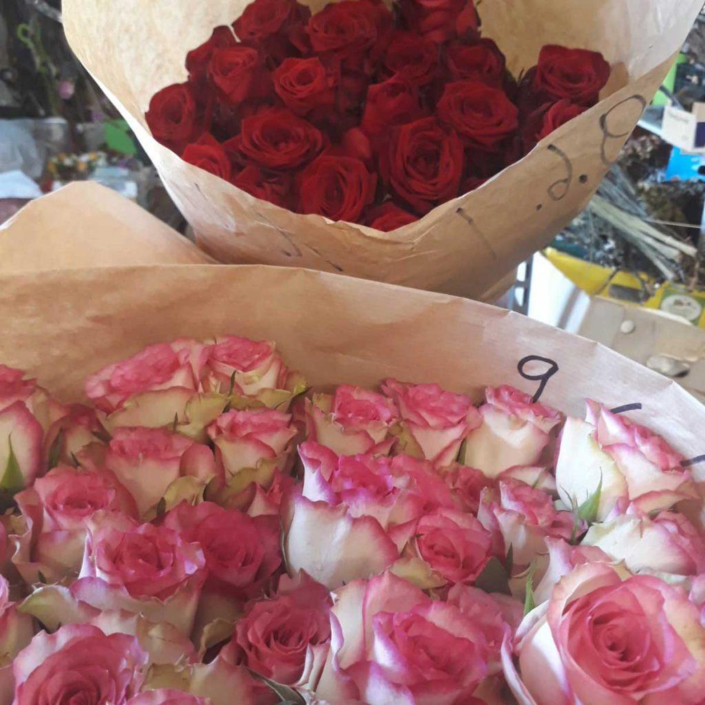 Rosen, Blumen für die Jugendlichen