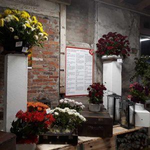 Verschiedene Blumensorten